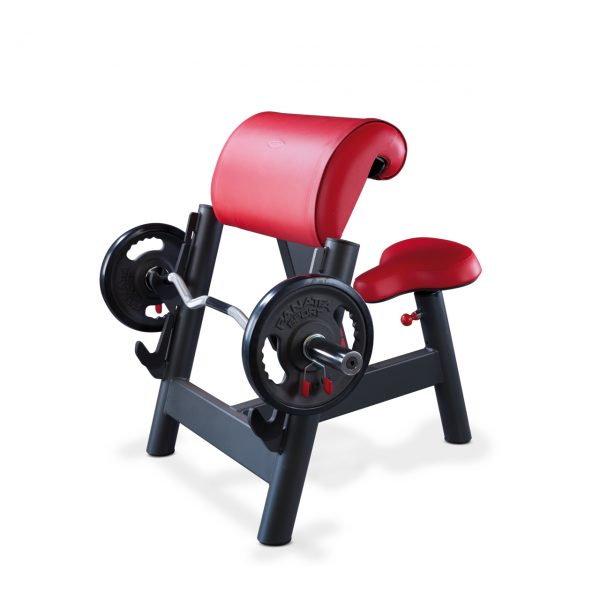 1SC208-Seated_curl_bench